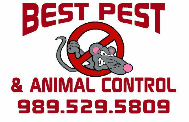 Best Pest & Animal Control