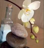 PDX Holistic   Healing Spaces