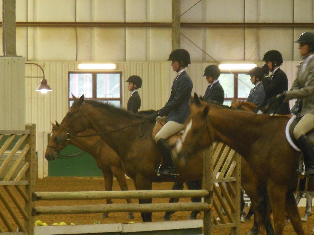 Pine Hill Equestrian