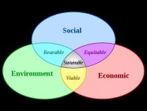 Ethical Impact L3C