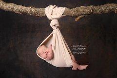 Jill Nelson Photography