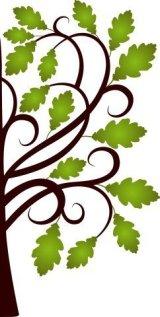 Oak Leaf Massage & Bodywork