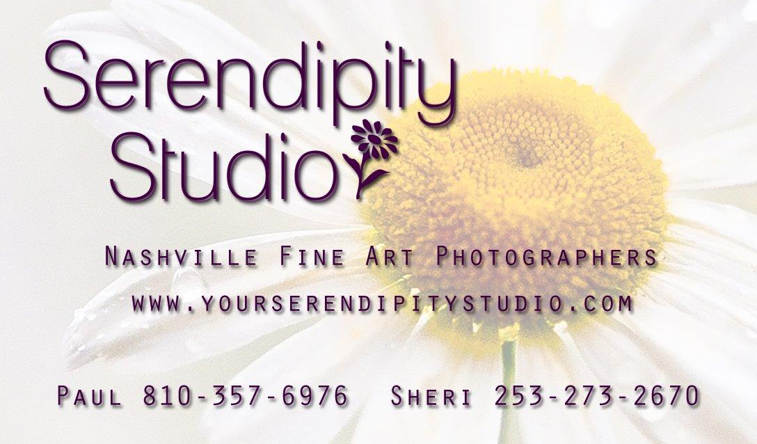 Serendipity Studio