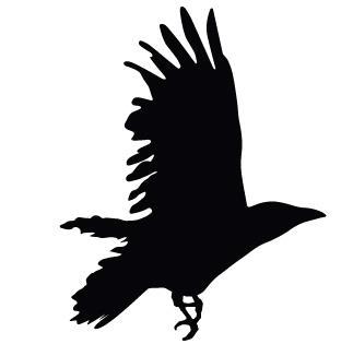 Dancing Crow Massage