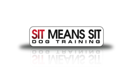Sit Means Sit Denver Dog Training