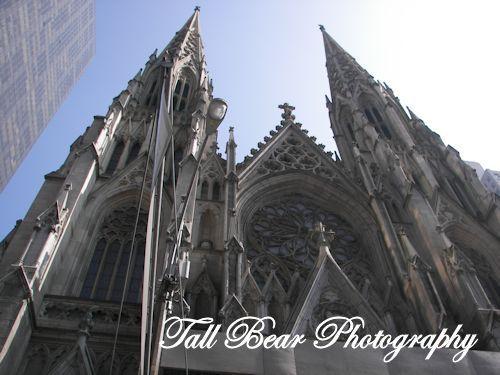 Tall Bear Photography