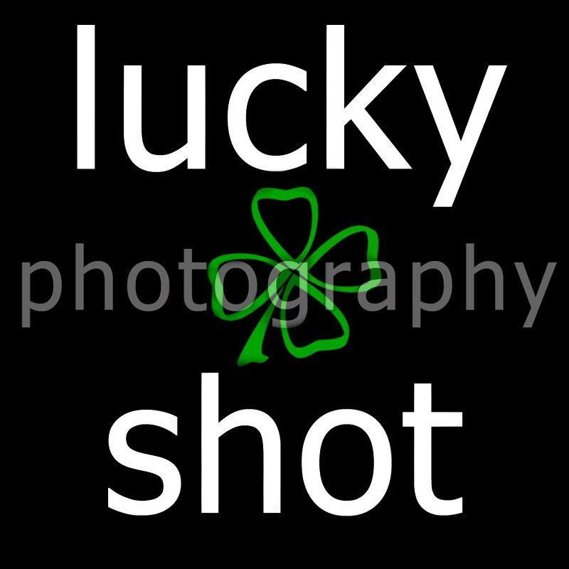 Lucky Shot Photography
