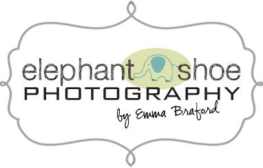 Elephant Shoe Photography