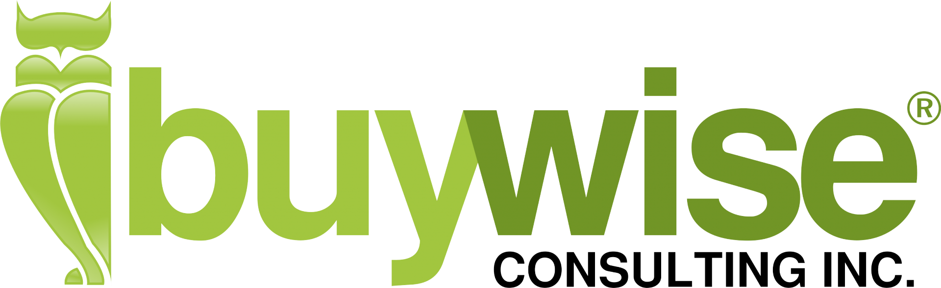 BuyWise Consulting Inc.