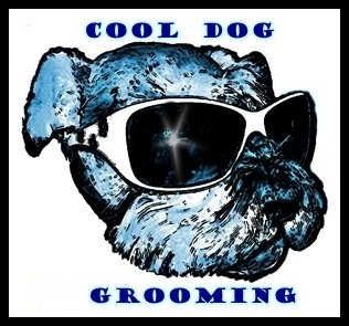 Cool Dog Grooming Studio, LLC