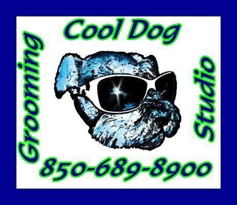 Cool Dog Grooming Studio, LLC