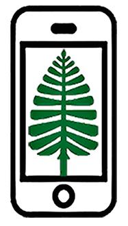 Lone Pine Repairs